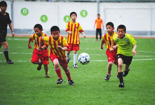 地方足协主要服务于青少年足球