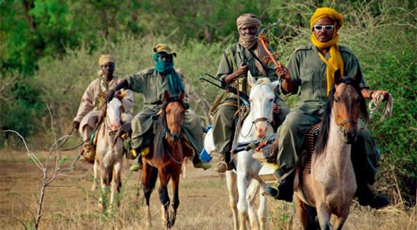 面对遍及非洲大陆的偷猎行为,反盗猎者大多数时候显得力不从心