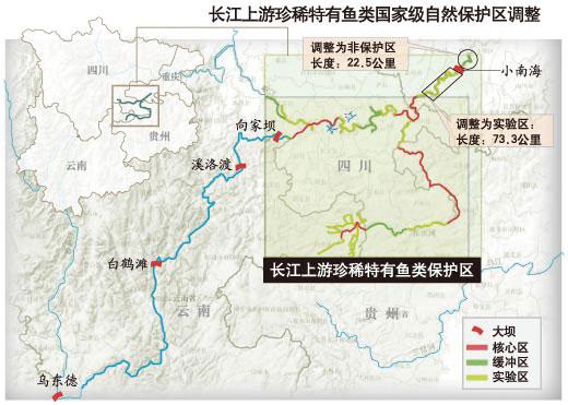 """环保部称:""""过去十年,长江上游珍稀,特有鱼类国家级自然保护区因金沙江图片"""