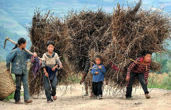 农村留守儿童也是家里的劳动力,常常要干各种农活