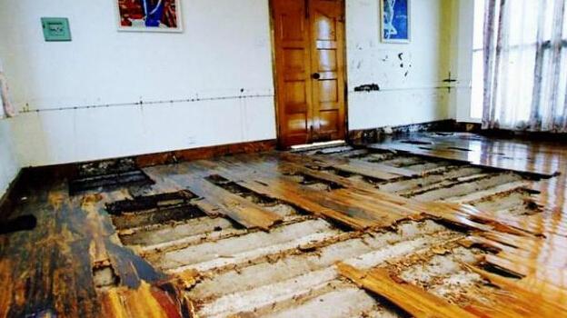 被白蚁扫荡过的木质地板