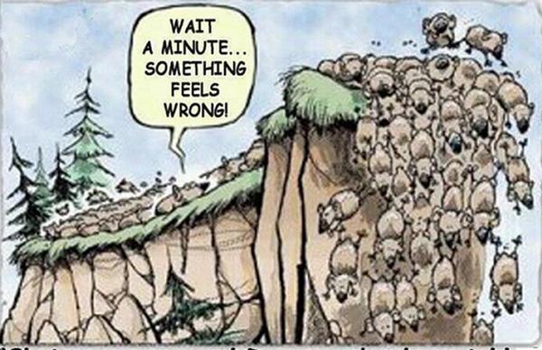 在羊群效应之下,即便发现股市有什么不妥,也很难改变自己的行为