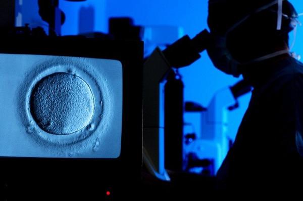 一位医生正在使用显微镜观察人类卵细胞的体外受精过程,该卵细胞是被冻结保存的