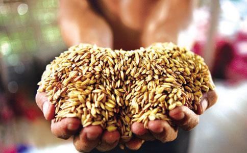 很多中国人认为,节省下来的粮食会凭空转移到饥饿人群口中