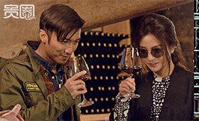 赵薇喜爱红酒,投资了法国波尔多红酒庄