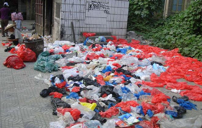 """生活垃圾中的塑料袋最能反映""""限塑令""""的整体效果"""