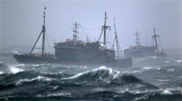 中国远洋渔船在西非渔场
