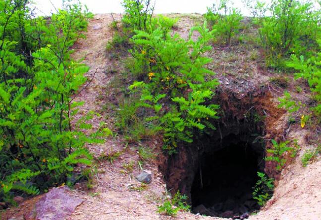 盗墓后留下的盗洞,这在古墓较多的地方很常见