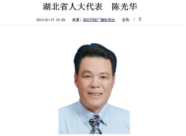 武汉宏兴幕后老板陈光华