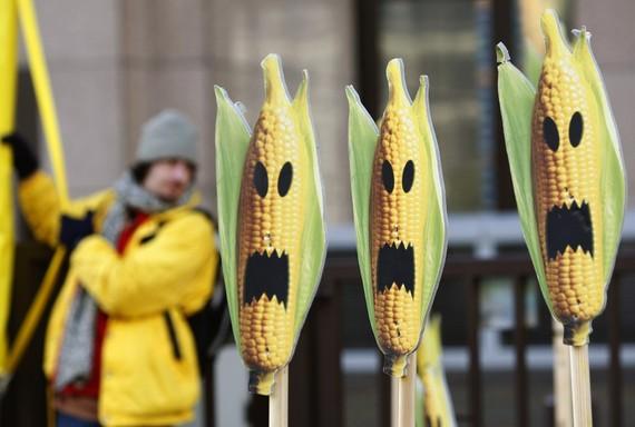 近年来,美国人对转基因食品的接受度也在降低