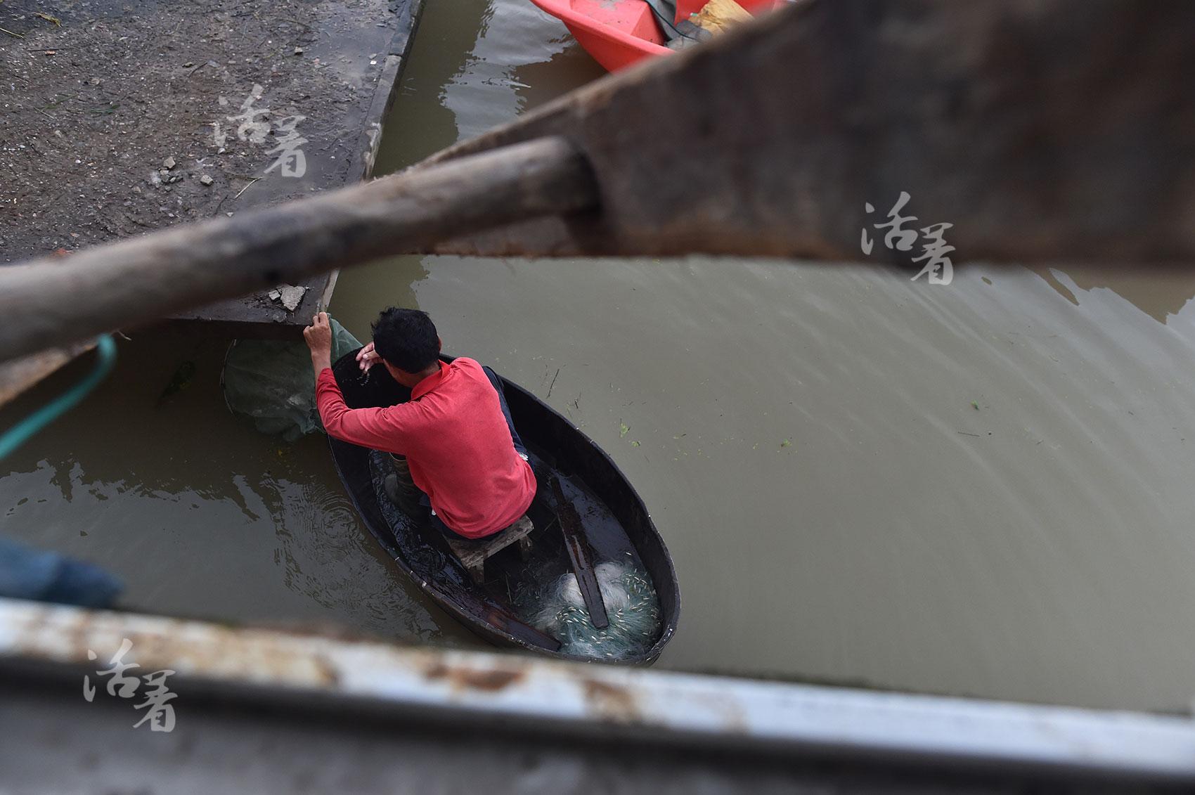 【活着】 留守在洪水中的家     摄影/江海  编辑/王崴  2016-07-13 - 海阔山遥 - .