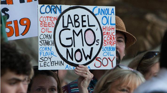 LABEL GMO即为转基因标识