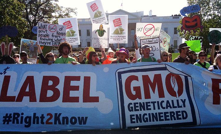 不少团体积极发动民意,支持转基因标识