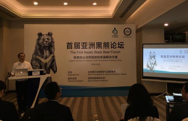 3月29日,它基金秘书长张小海在首届亚洲黑熊论坛上呼吁社会各界携手探索终止活熊取胆业的多赢解决方案