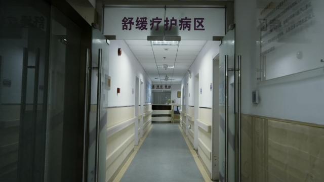 上海在社区服务中心试点的缓和医疗