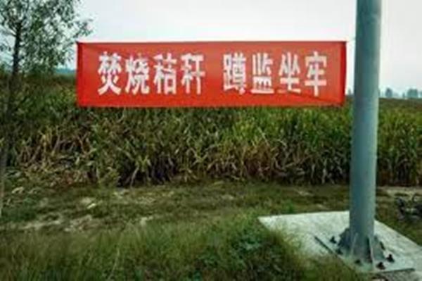 类似的标语,很多产粮区都可以见到