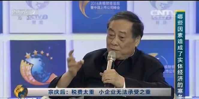 娃哈哈董事长宗庆后谈税费问题