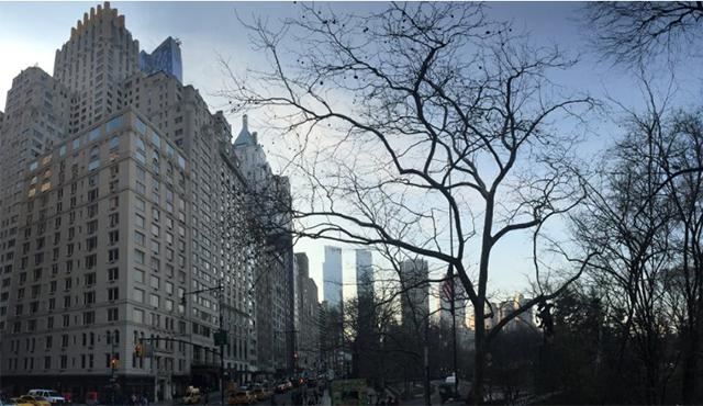 曼哈顿中央公园南100号
