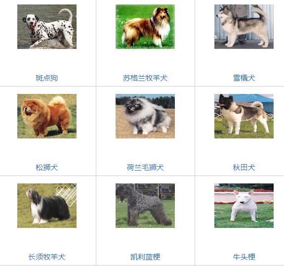 北京部分禁养犬类,注意,雪橇犬包括哈士奇和阿拉斯加