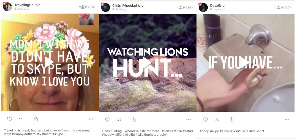 网友分享在Ditty社区分享制作的短视频