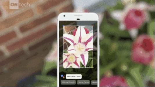 Google Lens 视觉识别