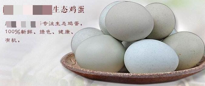 一个鸡蛋,玩转出多种概念:绿色、有机、生态