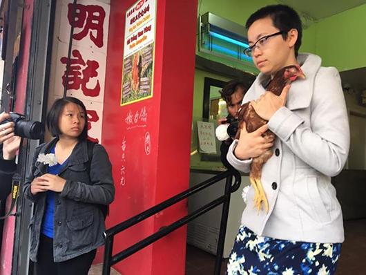 动物保护人士抱着鸡走出家禽店