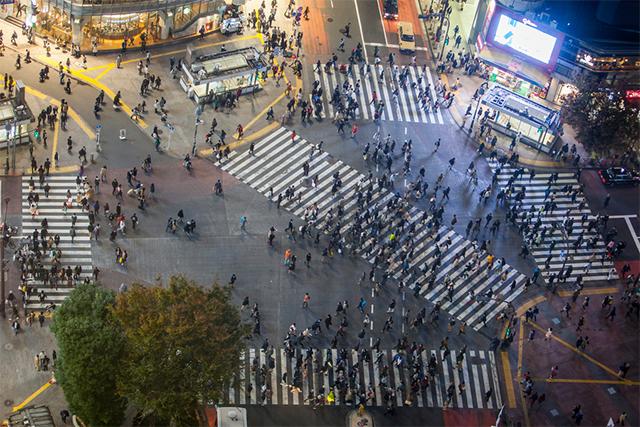 日本东京新宿的斑马线