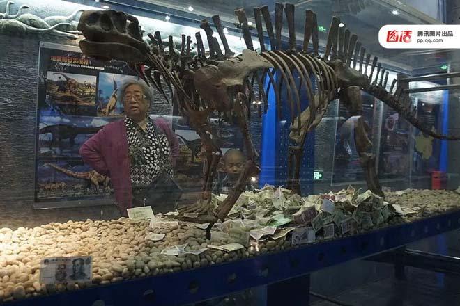 图:2015年5月,北京博物馆古生物馆里的一只无齿芙蓉龙骨架,展柜内堆满了纸币和硬币。