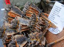 吃蛤蚧容易生双胞胎?谣言!