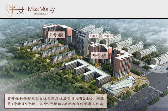 北京共有产权房来临 国外又是怎么玩转政府租