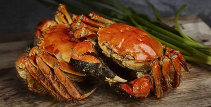 二噁英超标,还能愉快地吃大闸蟹吗?