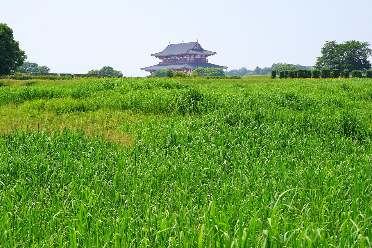 奈良平城京跡