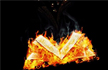 焚书的全球史