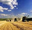 我国加快农垦国有土地使用权确权登记发证