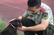夫妇向消防捐狗:希望小萌犬成为搜救犬