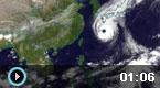 为何台风名称千奇百怪?