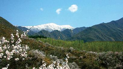 Snow-capped Haituo