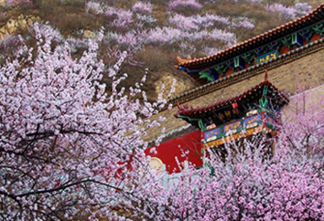 Les belles vues de Zhangjiakou