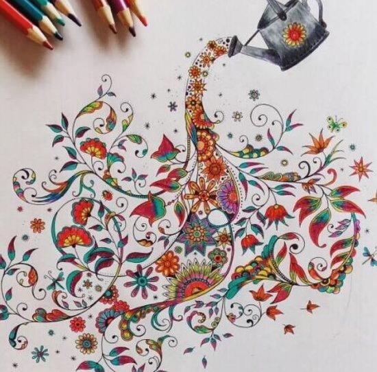 彩铅精品绘画课程,手绘植物,动物和卡通,四季之色跃然纸上,绘画老师