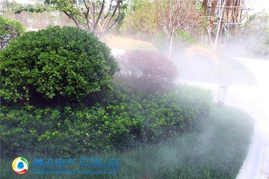 鹰城90%的人都不知道 有这样一个远离雾霾的好去处