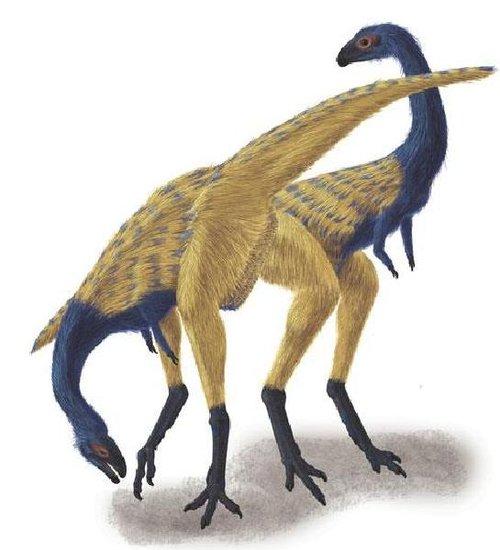 克龙弗兰德犬-2009年古生物学家在中国西北富含恐龙化石的地层中又有新发现.中国高清图片