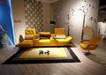地毯颜色宜缤纷