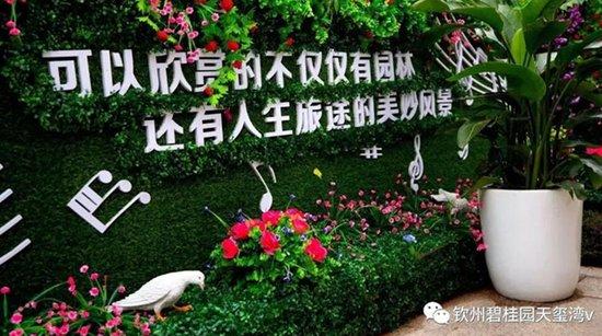 钦州碧桂园天玺湾12月23日耀世开盘 热销盛况空前!