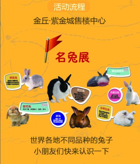 金丘紫金城:全球萌兔主题展 紫金城邀您中秋来看