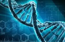 """华大基因的多事之秋:""""举报门""""""""癌变门""""相继发酵"""