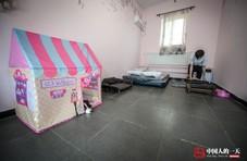 北京土著建8000平狗狗乐园 配豪华泳池真皮沙发