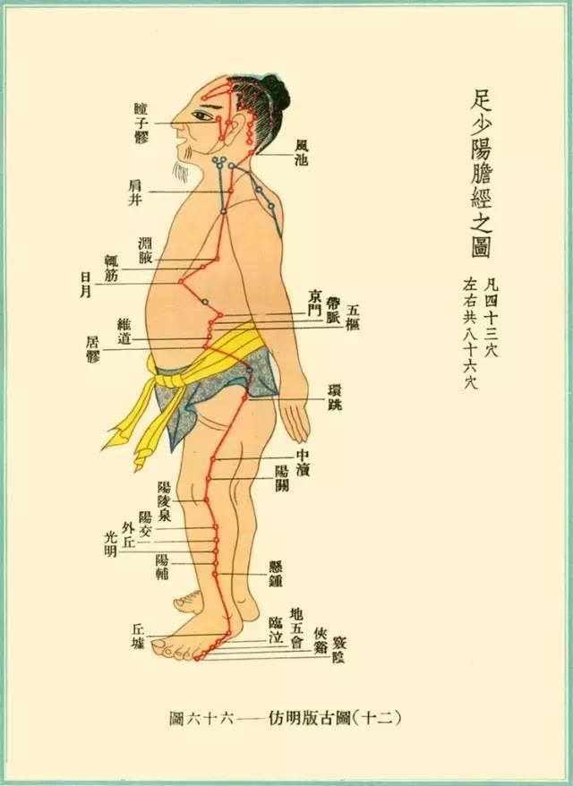 世上本无病 只是瘀和堵!怎样通过经络按摩获得健康?