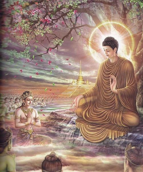 佛陀只用二十个字 道破三世因果真谛图片