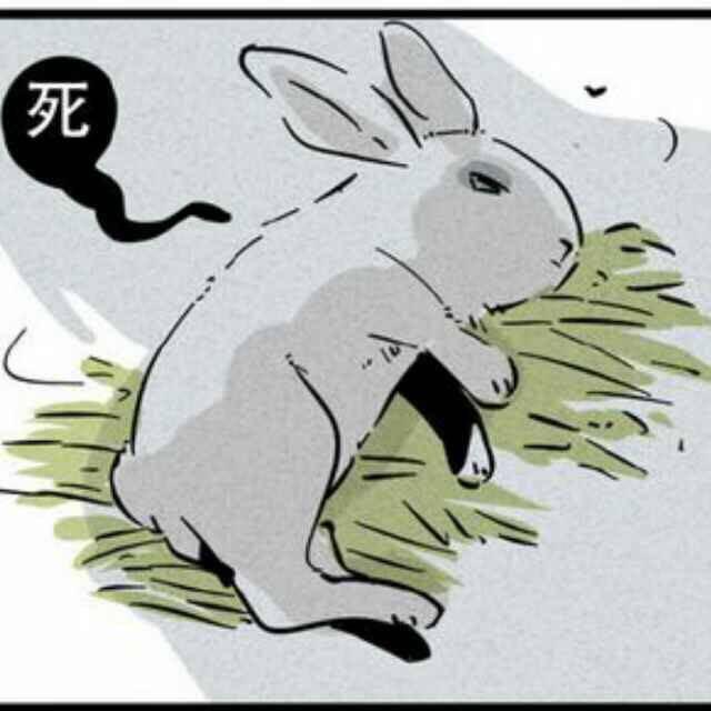 可怜的兔子 你葬身在爸爸肚里了 我来给你上坟…